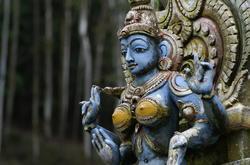 Sri Lanka 2014 -