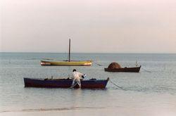 Tunisia 2003 -
